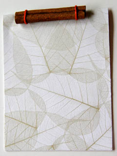 Memo book made with cinnamon stick, red rubber band, and patterned leaf paper