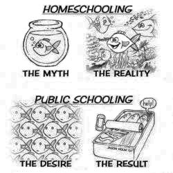 Homeschooling: The Myth, The Actuality